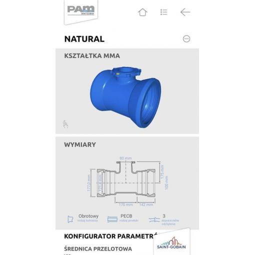 Aplikacja Wirtualny PAM – systemy innowacyjne Saint-Gobain PAM